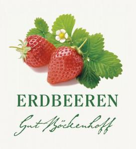 home-erdbeeren